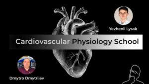 Cardiovascular physiology school